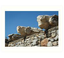 Ephesus Ruins Art Print