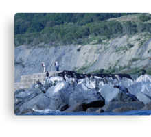 Cormorants On The Rocks............ Canvas Print