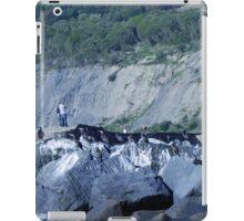Cormorants On The Rocks............ iPad Case/Skin