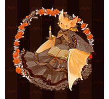 Bookish Bat Photographic Print