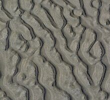 Patterns in the Sand by Kat Simmons