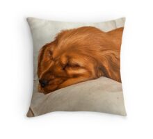 Golden Cocker puppy Throw Pillow