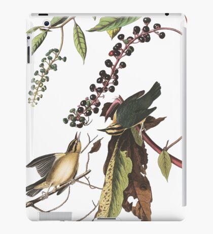 Worm-eating Warbler - John James Audubon iPad Case/Skin