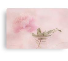 Pink Peony Blossom In Clear Glass Tea Pot  Metal Print