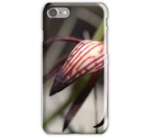 Pyrorchis Nigricans 2 iPhone Case/Skin