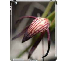 Pyrorchis Nigricans 2 iPad Case/Skin