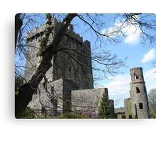 Blarney Castle 1 Canvas Print