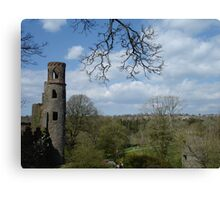Blarney Castle View Canvas Print