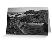 Giants Causeway Black & White Greeting Card