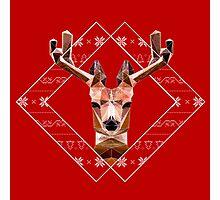 Modern Christmas Reindeer Photographic Print