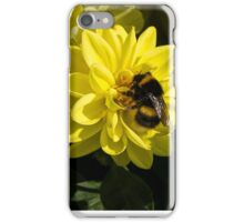 The Busy Bumble iPhone Case/Skin