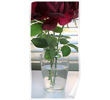 Vase With Red Roses Poster