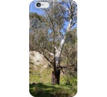 Tree by Jackson River iPhone Case/Skin
