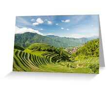 Rice fields in china Greeting Card