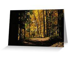 Path thru the woods...near Cripple Creek, Colorado Greeting Card