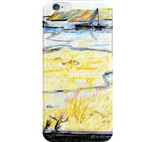 Upper Newport Bay 3 iPhone Case/Skin