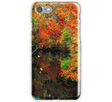 AUTUMN,LAKE iPhone Case/Skin