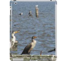 diving birds iPad Case/Skin