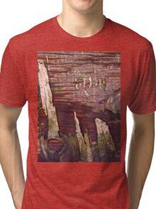 DECOMPOSITION (Damaged) Tri-blend T-Shirt