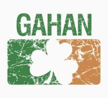 Gahan Surname Irish by surnames
