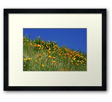 Poppy Flowers Meadow Blue Sky Green Hillside Art Framed Print