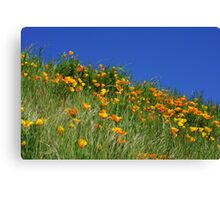 Poppy Flowers Meadow Blue Sky Green Hillside Art Canvas Print