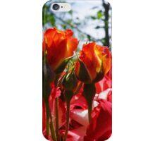 Red ORANGE Roses Garden art prints iPhone Case/Skin