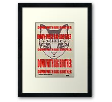 Orwellian Cat: Down With Big Brother Framed Print