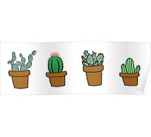 cactus hipster drawing Poster