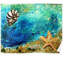 Sea star and nautilus Poster