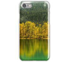 Reflections In Moose Lake iPhone Case/Skin