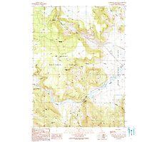 USGS TOPO Map California CA Washington Mountain 295649 1990 24000 geo Photographic Print