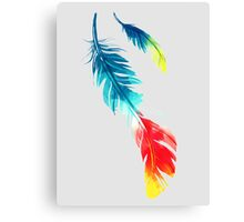 Feather Color Graphic Canvas Print