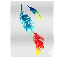 Feather Color Graphic Poster