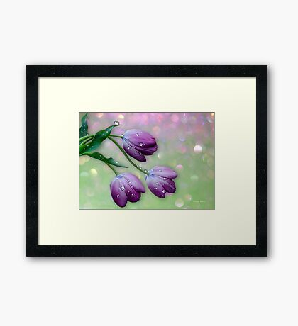 A Tribute to Mothers Framed Print