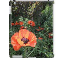 Scarlet Purse of Dreams iPad Case/Skin