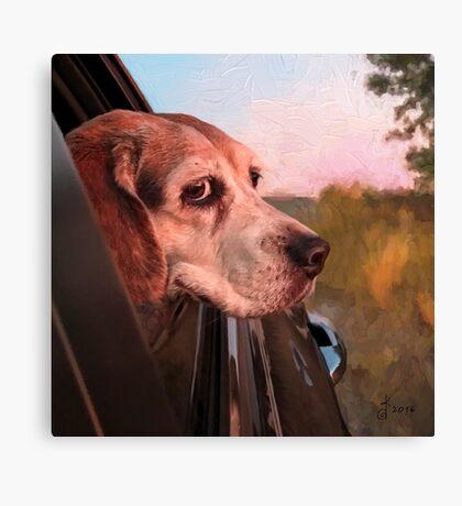 """""""Maggie Mae's Car Ride"""" Canvas Print"""