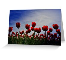 SPRING FEELINGS Greeting Card