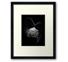 The Rose Framed Print