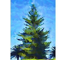 Bright Christmas Tree Photographic Print