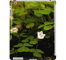 Wood Sorrel, Ness Woods, County Derry iPad Case/Skin