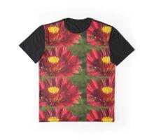 Sunburst Burgandy Graphic T-Shirt