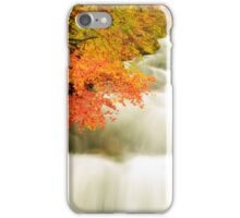 The Soteska Vintgar gorge in Autumn iPhone Case/Skin