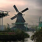 Windmills of Amsterdam (8) by Larry Lingard-Davis