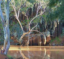 Depot Glen. Near Tibooburra, NW NSW. by Liz Worth
