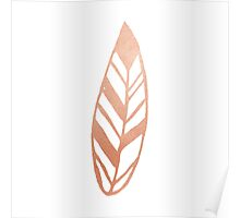 Rose gold feather Poster