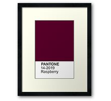 PANTONE raspberry Framed Print