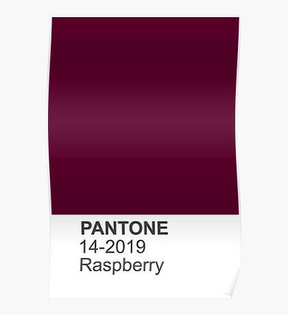 PANTONE raspberry Poster