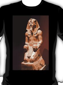 Italy. Turin. Egyptian museum. Pharaoh. T-Shirt