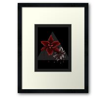Lily Drips Framed Print